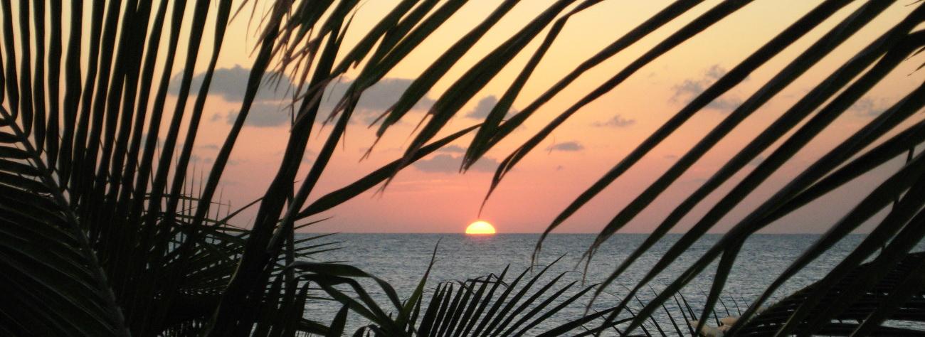 Casa Phoenix Cozumel Vacation Rentals